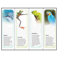 Animal Printable Bookmarks™ Template for Microsoft Publisher