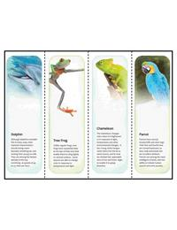 bookmarks templates for publisher - animal printable bookmarks template for microsoft publisher
