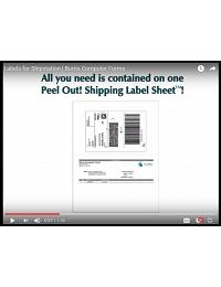 ShipStation labels | Convenient All-in-One Shipping Labels